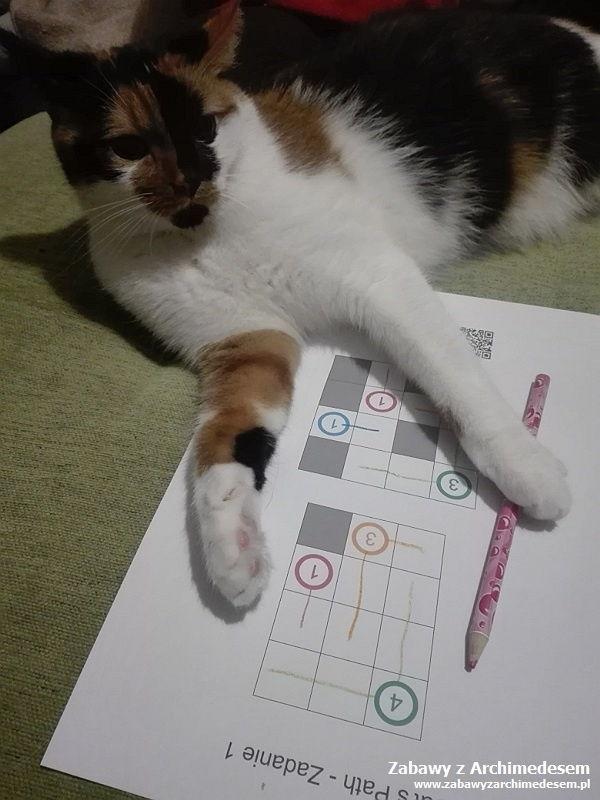 cat's path - zagadki logiczne