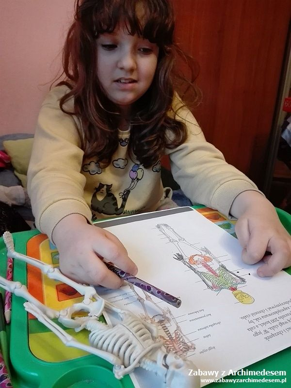 edukacja domowa luty 2018