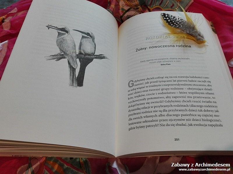 Zadziwiający Świat Ptaków