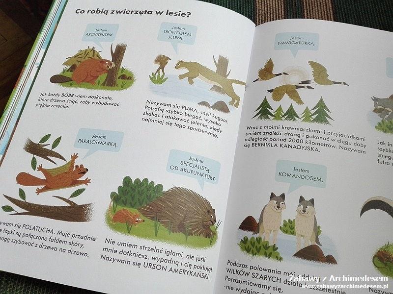 Zawodowcy wświecie zwierząt