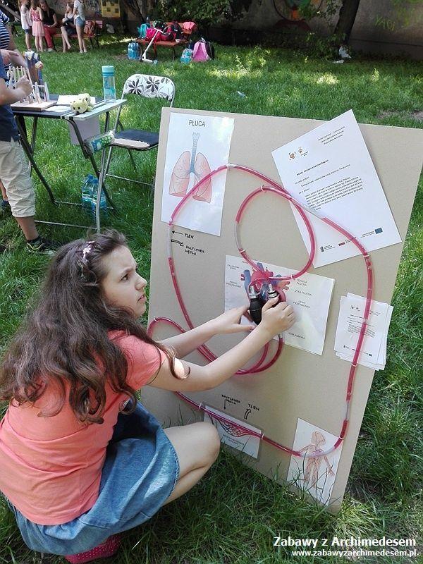 Studenckie życie: Piknik naukowy w Szkół Demokratycznych