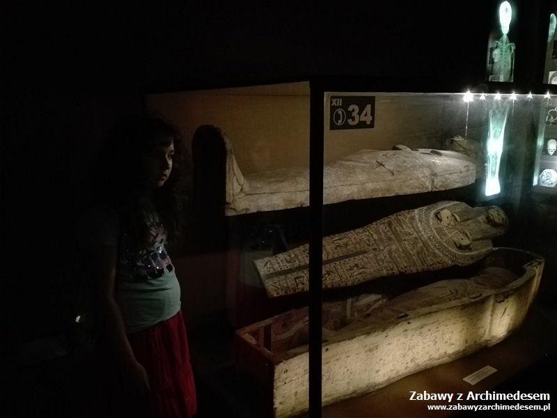 Wakacyjne podróże zhistorią isztuką: Wizyta wMuzeum Archeologicznym