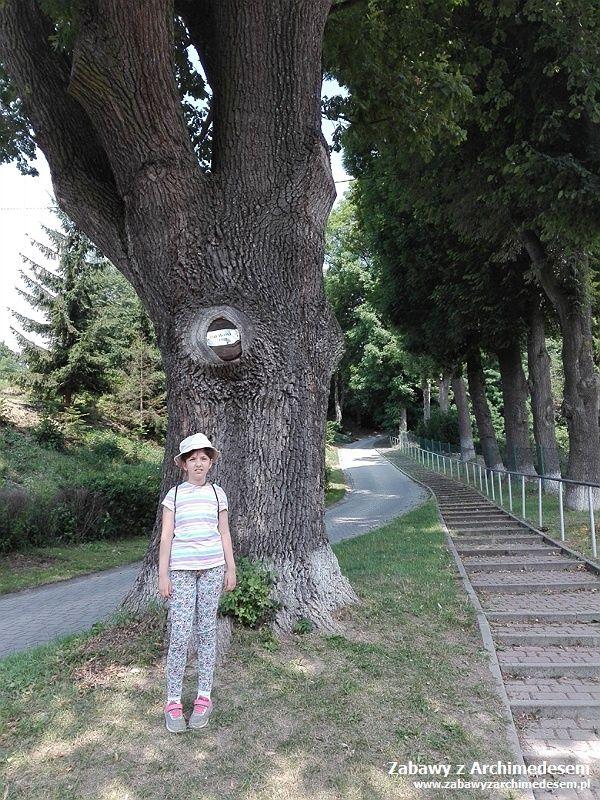 Wakacyjne podróże zhistorią isztuką: Quest
