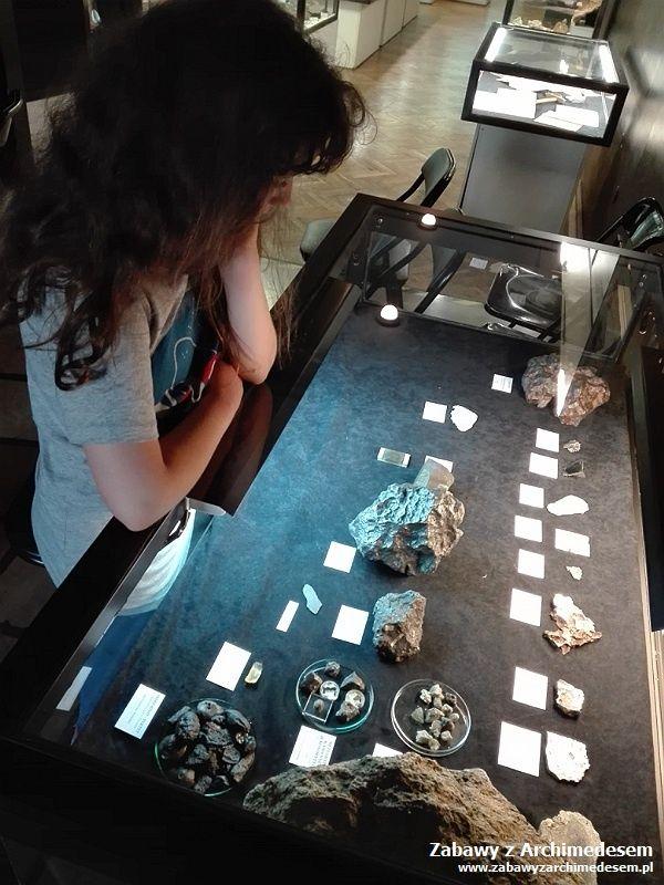 Pierwszy człowiek: Muzeum Geologiczne wKrakowie