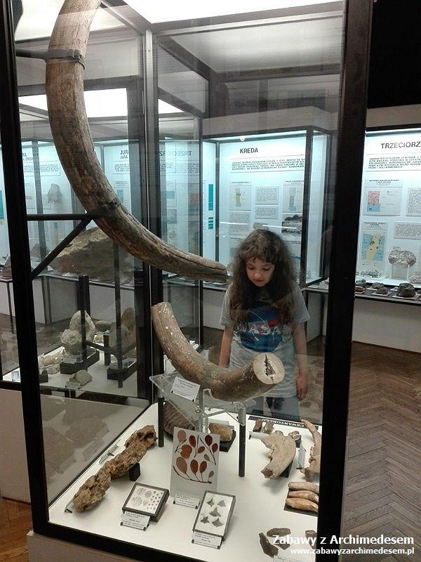 Pierwszy człowiek: Muzeum Geologiczne w Krakowie