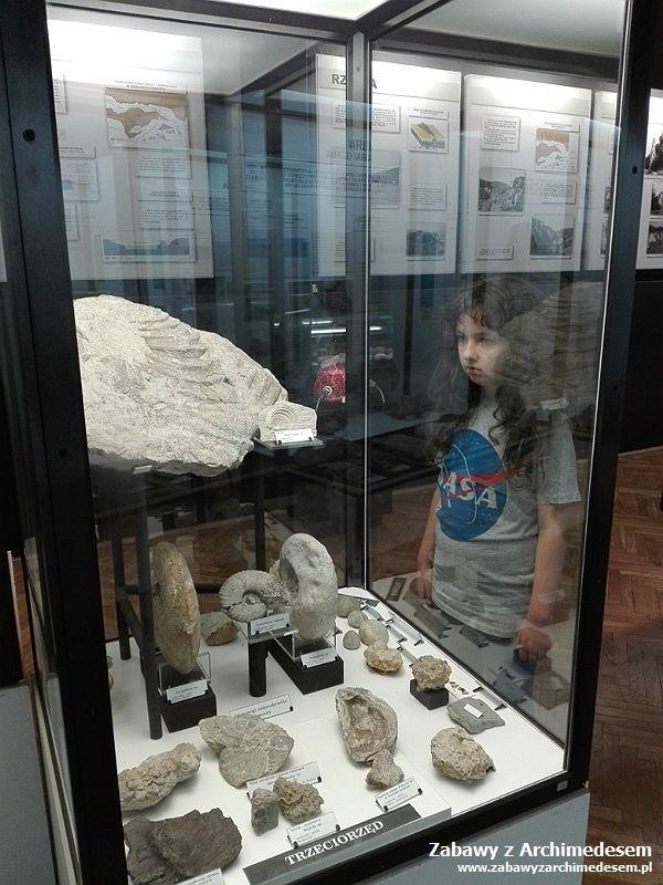 Muzeum Geologiczne w Krakowie