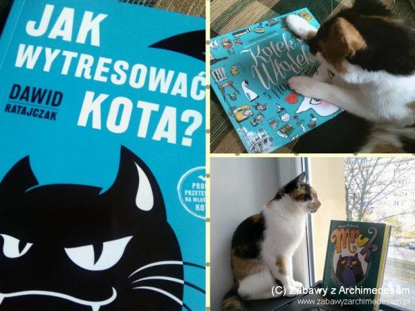 Koty, kotki i kociska czyli... nasze kocie książkowe top 3