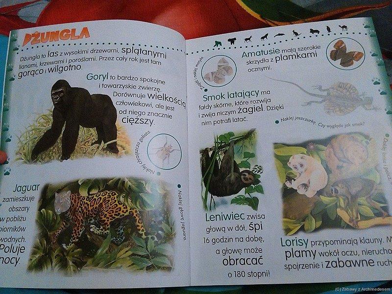 zwierzęta świata