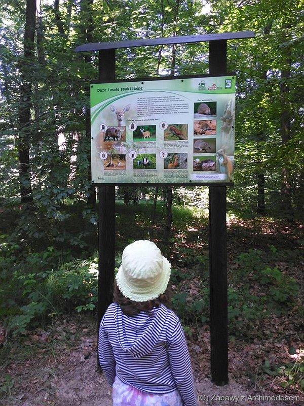 Edukacyjna ścieżka przyrodnicza