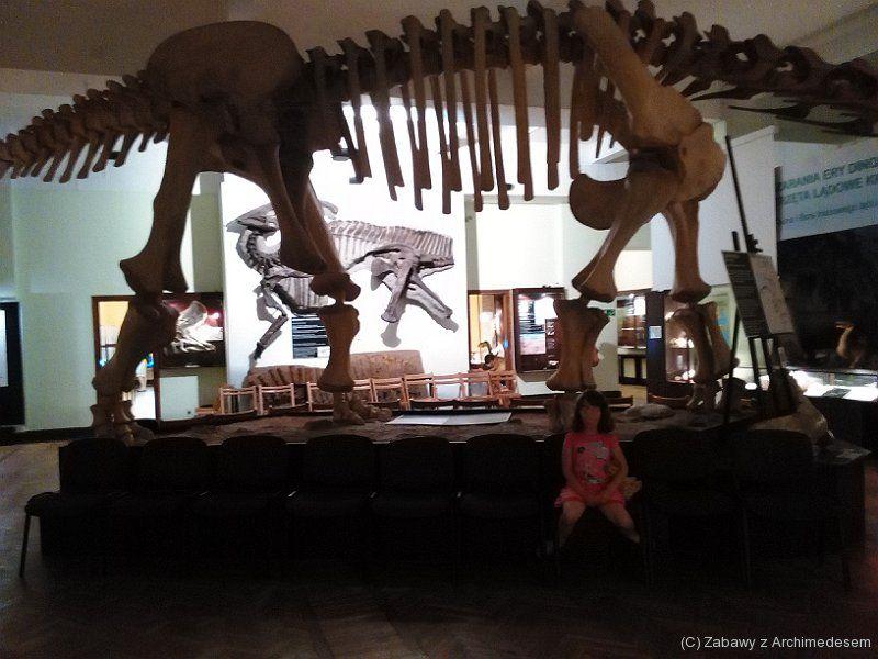 świat dinozaurów - dzień dinozaura